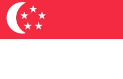 新加坡个人旅游签证