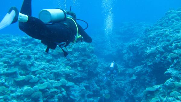 普吉岛旅游攻略――普吉岛最好玩的是什么