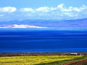 美丽、纯净的地方――青海湖塔尔寺