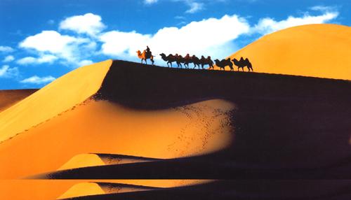 天下黄河真的富宁夏了吗??沙坡头、通湖草原旅游攻略