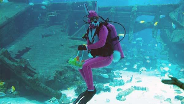 潜水兔复活节现身S.E.A.海洋馆喜迎游客