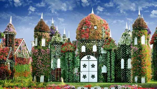 任性迪拜建世界最大最美花园 耗费4500万朵鲜花