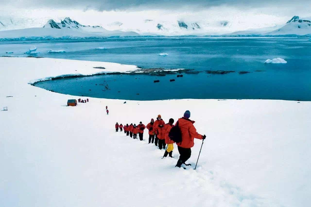 世界气象组织确认 南极大陆最高气温为17.5℃