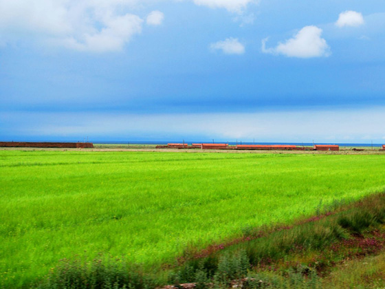 在青海湖边感受健康生活