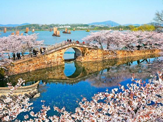 华五+黄山千岛湖+三大水乡10日游
