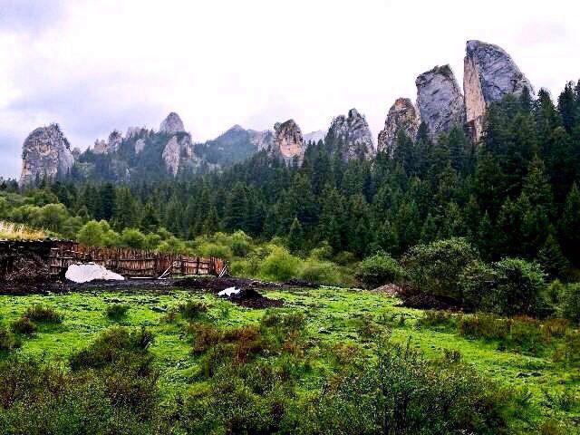 (精彩纯玩)甘南扎尕那、则岔石林、花湖、郎木寺摄影3日游