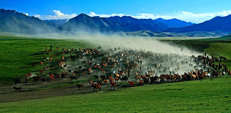 兰州到巴丹吉林沙漠+山丹军马场旅游跟团游