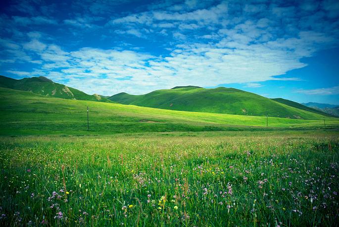 拉卜楞寺、桑科草原、郎木寺、花湖、扎尕那四威廉希尔手机客户端