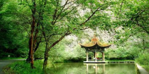 吐鲁沟森林公园、鲁土司衙门 一日游